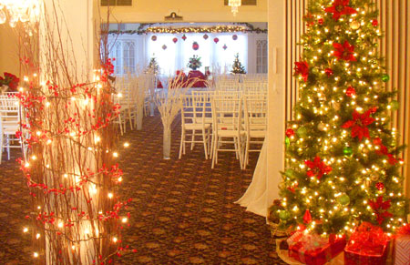Lovely christmas wedding decoration